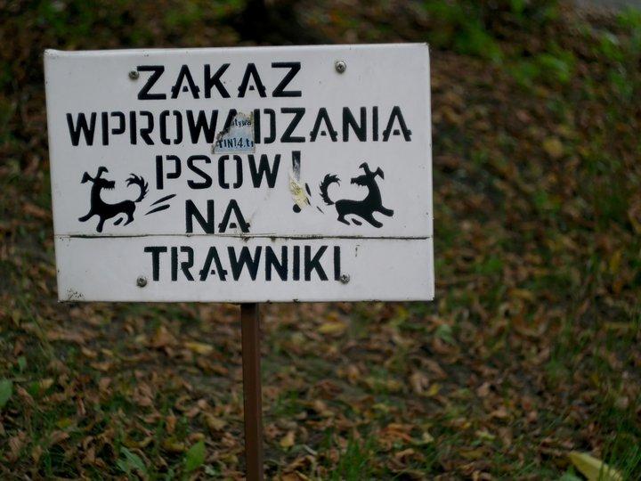 Rubinkowo [fot. Marcin Ostajewski]