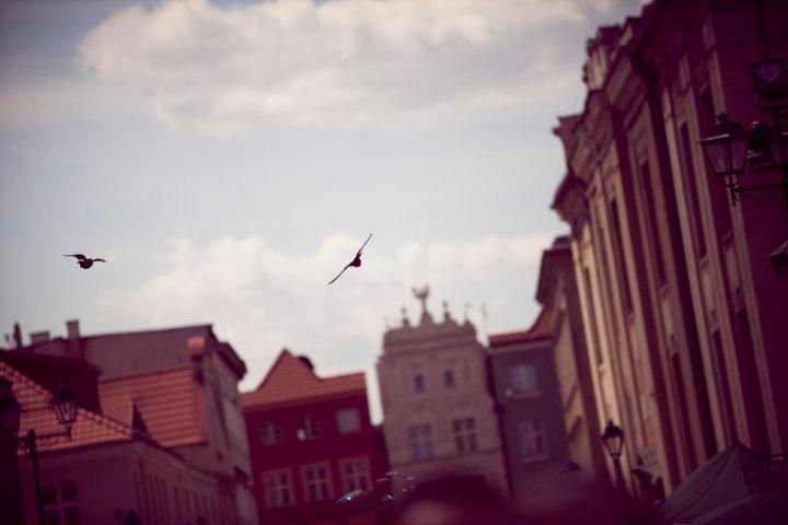 Staromiejskie [fot. Radosław Worek]