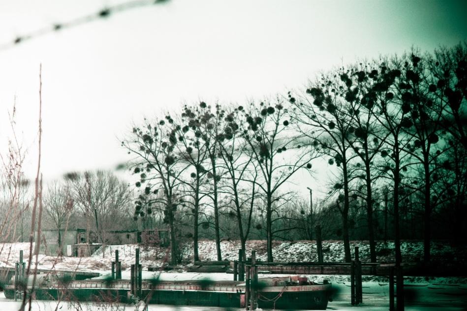 Rybaki [fot. Anna Kwiatkowska]